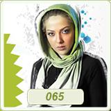 قالب وبلاگ خواننده ایرانی